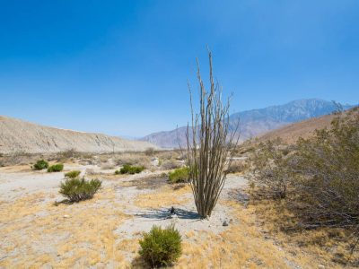 Desert oasis hideaway near Palm Springs and Coachella Valley