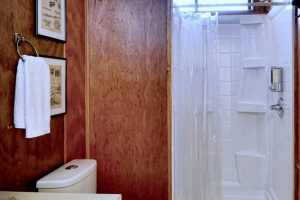 Mahogany walls in Southwest Room bathroom at Casa de los Desperados bed and breakfast